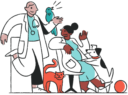 veterinarians with dog, cat, bird